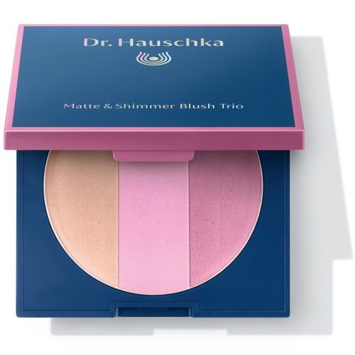 Dr. Hauschka Matte & Shimmer Blush Trio Welcome back 9 g